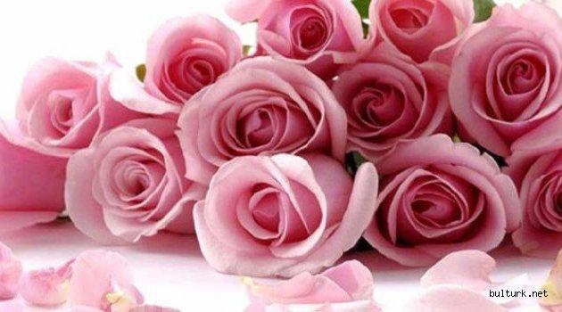 14 Şubat Sevgililer günü nedir?