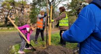 Burgas Belediyesi ağaç dikerek hava kirliliği ile mücadele ediyor
